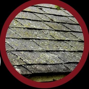 shingle mold